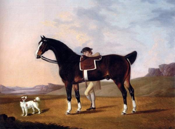 A gentleman With A bay Hunter And Spaniel In A Coastal Landscape